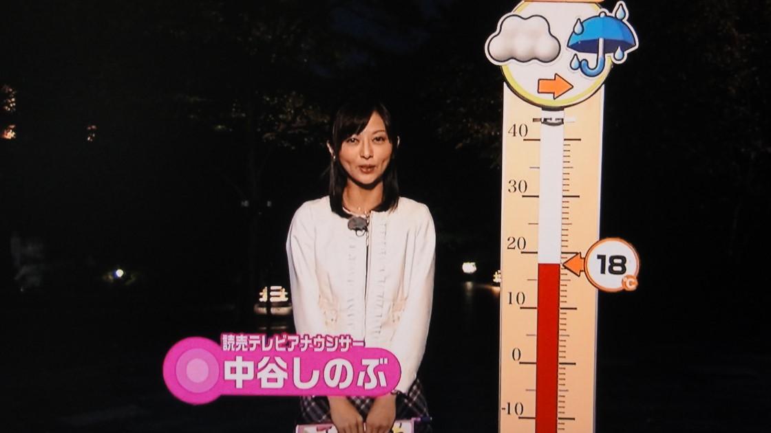 吉田奈央 (フリーアナウンサー)の画像 p1_20